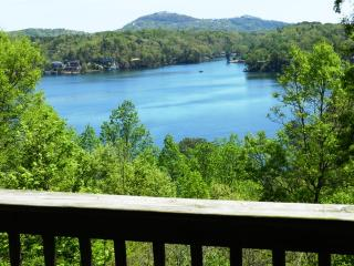 Cozy Log Cabin, Views of Lake Lure & Mountains