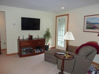 Flat screen TV, cable, and wireless internet in a comfortable living area