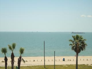 Beachfront Condo 3226 Free WiFi-Tropical Getaway, Corpus Christi