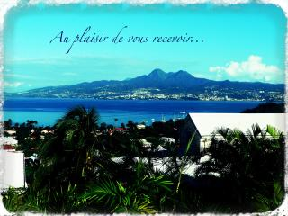 Nice place, sea view....enjoy! Beau T1, vue mer... - Martinique vacation rentals
