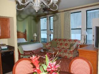 Studio Sleeps 4 near French Quarter and Casino!, New Orleans