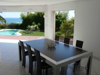 Luxury villa in Nice, quiet & close to center, A/C, heated pool, Niza