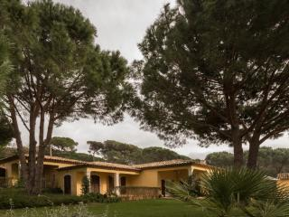 Provencal Villa, Sleeps 8, with a Pool and Pet-Friendly, in St-Tropez