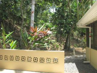 One-bedroom apartment, nearly in the rainforest, Gamboa