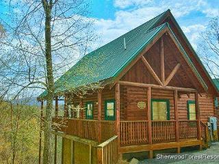 Beary Cozy, Pigeon Forge
