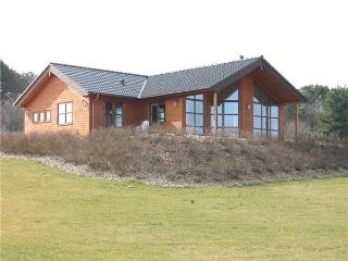 Newly built holiday house for 8 persons in Slagelse - Kalundborg vacation rentals