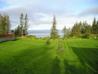 Ocean/Meadow View Cabin - Anchor Point vacation rentals