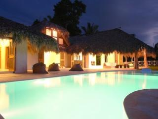 Luxury Villa With Oceanview, Infinity Pool, Park, Las Terrenas