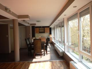 Bright apartment in the city center, Plovdiv
