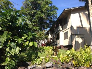 2 bdr fully equipped in paradise, Kailua-Kona