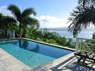 Glamorous Villa on Tortola British Virgin Islands!, Great Camanoe Island