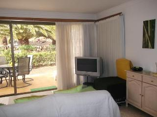 Ground floor spacious one bedroom apartment - San Miguel de Abona vacation rentals