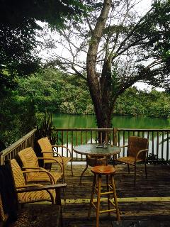 Lakeside Cottage in the Heart of Carite Forest, Guayama