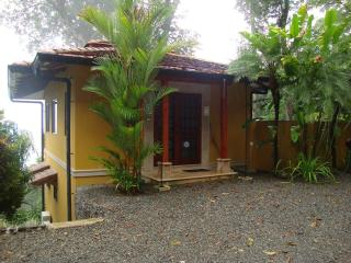 Villa Serena at Dominical Hills Ocean View