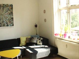 Cosy Copenhagen apartment at Enghave station