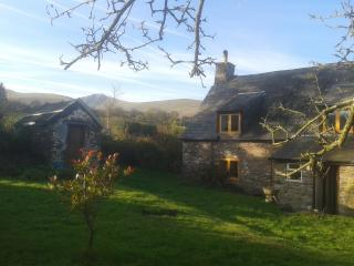 18th Century Hill Farm Cottage sleeps up to 7, Brecon