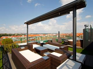 Luxury Penthouse with a Rooftop Jacuzzi, Kladno