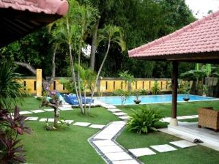 Great Family Villa With HUGE Swimming Pool & Wifi!, Canggu