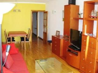 Modern, well located apartment in Barcelona - Copenhagen vacation rentals