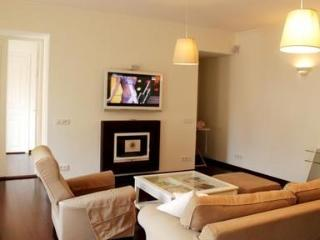 Fantastic two bedroom apartment on Nevsky Prospect - Copenhagen vacation rentals
