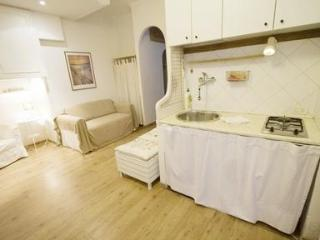 The Colosse White Apartment in Rome - Copenhagen vacation rentals