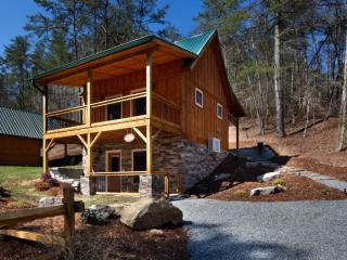 Laurel Mountain Retreat - Chanterelle - Weaverville vacation rentals