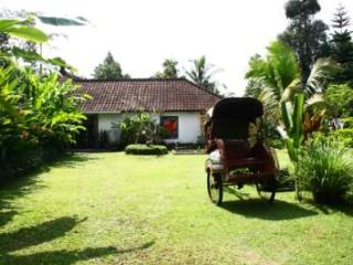 Beautiful Villa in the heart of traditional  Bali - Tegalalang vacation rentals