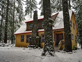 Large home-stone fireplace-Hot Tub-wifi, Rhododendron