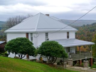 Vacation Home 10 Minutes From Fallingwater House.. - Mill Run vacation rentals