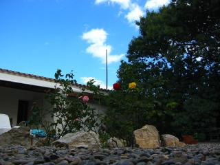 House with garden next to the beach, Cadaques