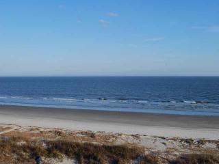 4 Bdrm Sea Pines, Close to Beach, Pet Friendly - Hilton Head vacation rentals