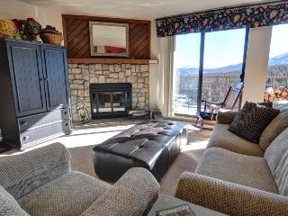 BUFFALO RIDGE 205: 2 Bed/2 Bath, Condo with Views, Sleeps 6, Clubhouse, Trails, Covered Parking, Silverthorne