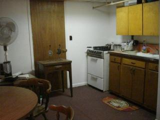 Cozy Suburban Studio in New Hyde Park- 1 hr. to midtown Manhattan NYC