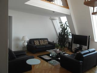 Well furnished Apartment for short term rent, Vienna