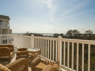 Salt Meadows-Fenwick Island 122250