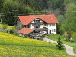 Vacation Apartment in Wiggensbach - 969 sqft, nice view, secluded, bright (# 5151)