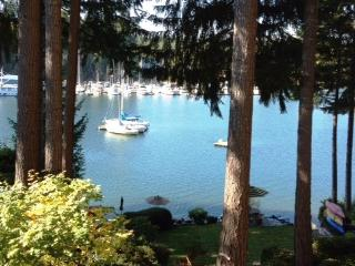 Charming Waterfront Cabin on Treasure Island, Grapeview