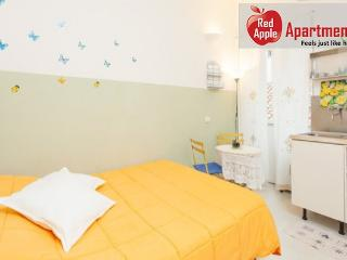 Lovely Bright and Romantic Studio in the Heart of Rome - Copenhagen vacation rentals