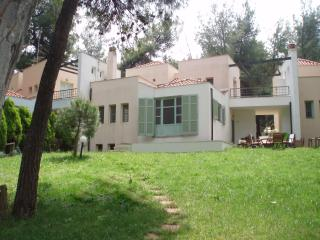 KASSANDRA SANI  VILLA IN THE FOREST, NEAR THE SEA, Kassandra