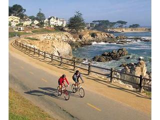 Great Views Of Monterey Bay! Walk To Asilomar Beach! - Pacific Grove vacation rentals