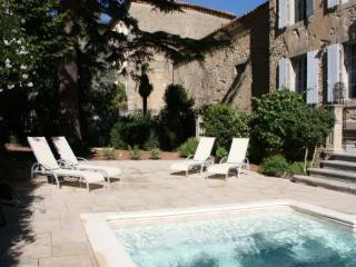 Manoir Theron - Huge family friendly maor house wi, Pepieux