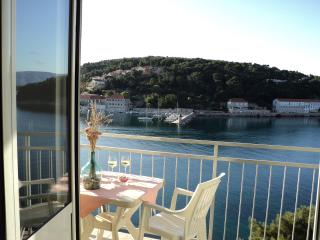 Apartment with a Great Sea View!, Jelsa