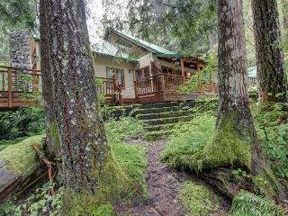 Papa Bear Cabin - Mount Hood vacation rentals