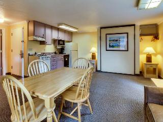 Pet-friendly studio w/ full kitchen; walk to Haystack Rock, Cannon Beach