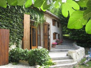 Spacious barn with large garden. - Chenaud vacation rentals