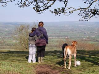 Family run B&B in East Devon close to Lyme Regis, Hawkchurch