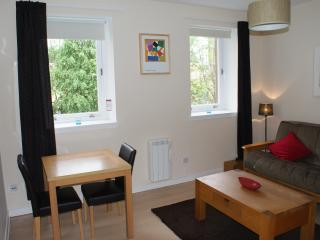 Beautiful flat in central Glasgow (lift & parking)