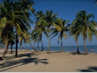 Key Biscayne 2 Bdrm/2 Bths Close to the Ocean^
