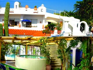 Apatments in a Botanical garden, sea view, pools. - Ischia vacation rentals