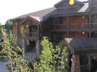 1BR2BA 5 Star Lakeside Bikepath Jacuzzi FP Garage, Frisco